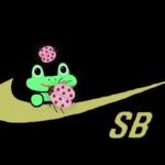 Nike SB | Frog Skateboards