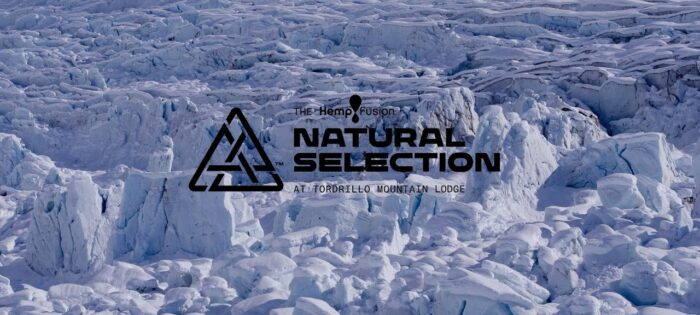 The Natural Selection Preview at Tordrillo Mountain Lodge